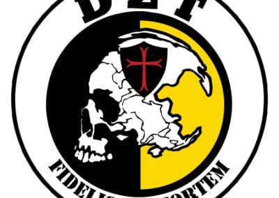Logo-DZT
